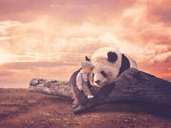 兒童攝影玩很大!?當小男孩遇見野生動物們