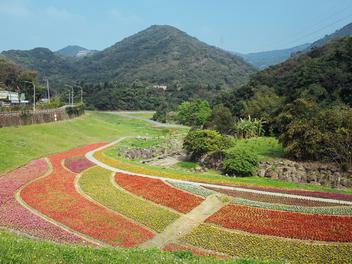 台北花海新景點:大溝溪生態公園,繽紛花毯桃花源