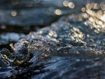 拍攝水面反射的創意