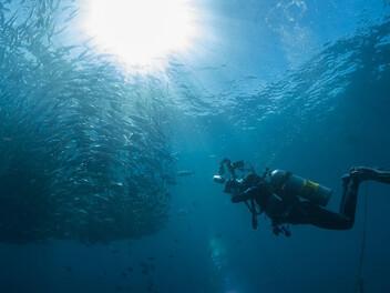 幫SONY RX100M5A穿上潛水衣!看水下攝影師Jim帶著MPK-URX100A專用深潛防水盒探險海洋