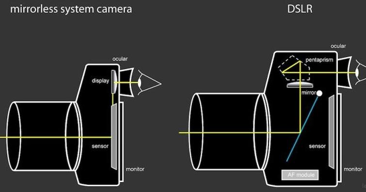 優缺點比較,光學取景器還是電子取景器?